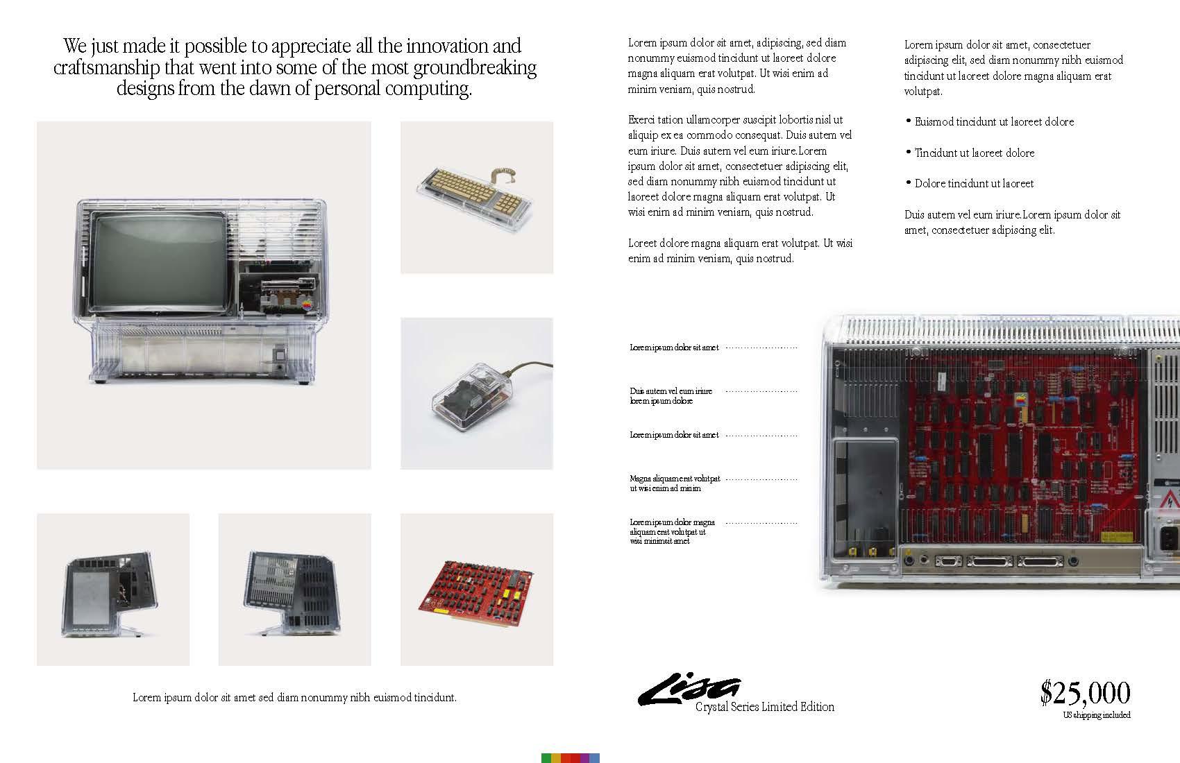 lisa_brochure_01202020a_Page_2